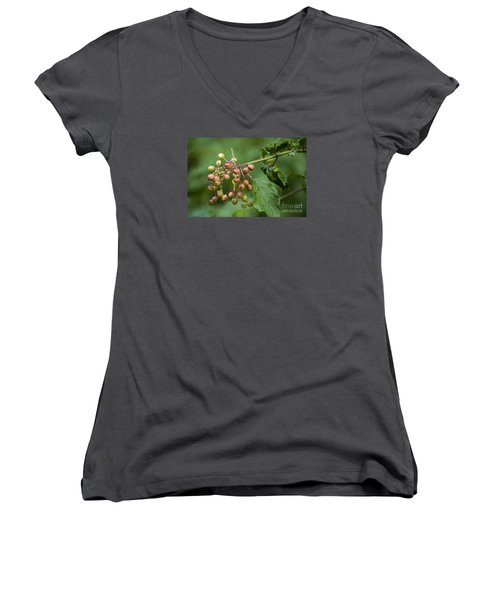 Women's V-Neck T-Shirt (Junior Cut) featuring the photograph High Bush Cranberry 20120703_106a by Tina Hopkins