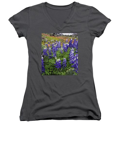 Hill Country Palette Women's V-Neck (Athletic Fit)