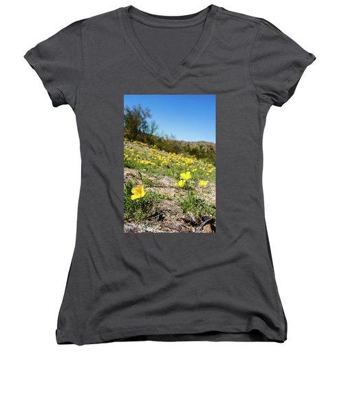 Hillside Flowers Women's V-Neck T-Shirt