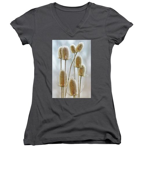 Hoar Frost - Wild Teasel Women's V-Neck T-Shirt (Junior Cut) by Nikolyn McDonald