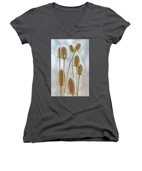 Hoar Frost - Wild Teasel Women's V-Neck T-Shirt