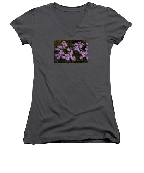 Hoary Tansyaster-signed-#9698 Women's V-Neck (Athletic Fit)