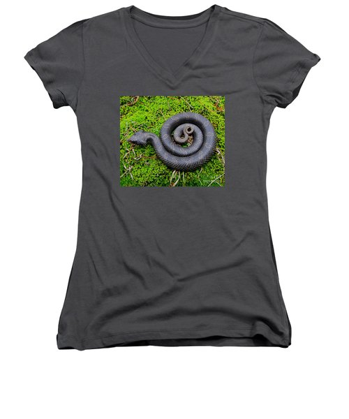 Hognose Spiral Women's V-Neck (Athletic Fit)