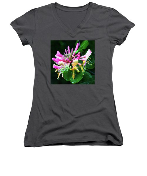 Honeysuckle Bloom Women's V-Neck T-Shirt (Junior Cut) by Robert FERD Frank