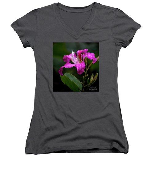 Hong Kong Orchid Women's V-Neck T-Shirt