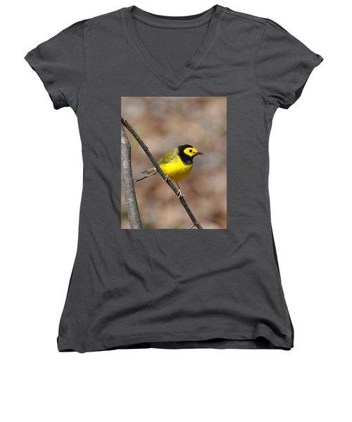 Hoodie Women's V-Neck T-Shirt