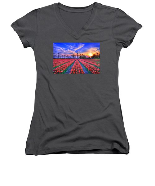 Hope Of Spring Women's V-Neck T-Shirt