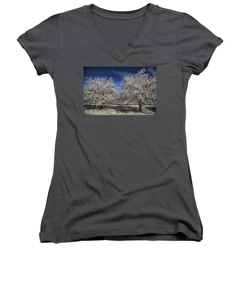 Women's V-Neck T-Shirt (Junior Cut) featuring the photograph Hopes And Dreams by Laurie Search