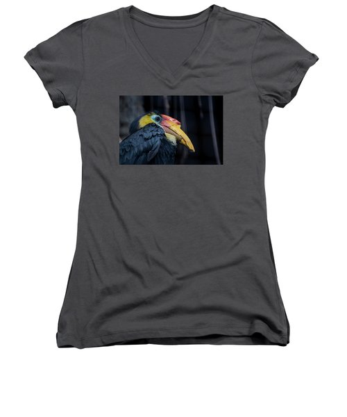Hornbilled Bird Women's V-Neck T-Shirt (Junior Cut) by Scott Lyons