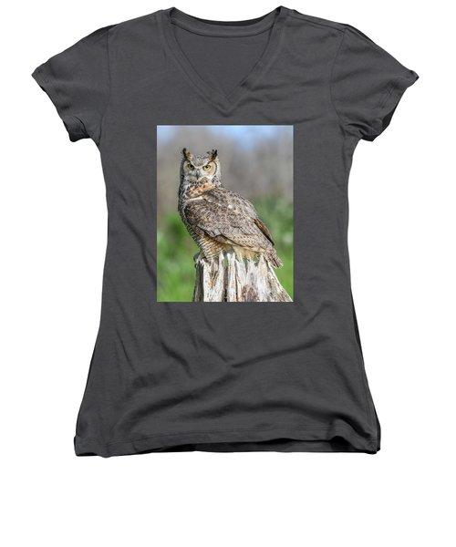 Horny... Women's V-Neck T-Shirt