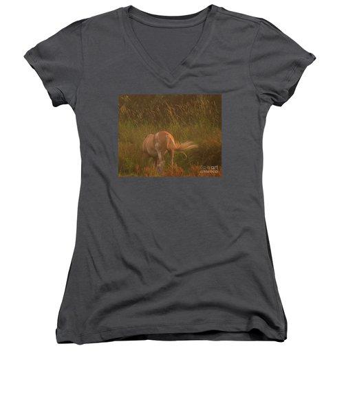 Horse 4 Women's V-Neck