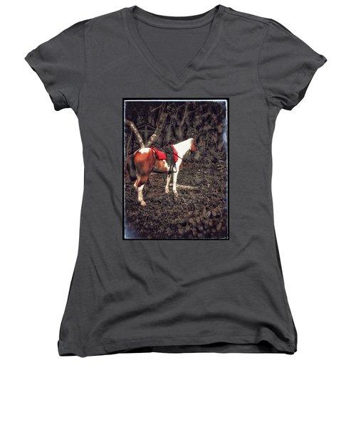 Horse In Red Women's V-Neck