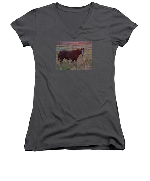 Horses 2 Women's V-Neck (Athletic Fit)