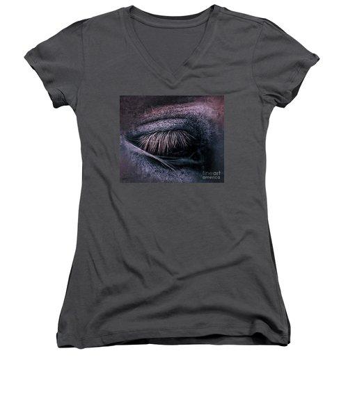Horses Eye-color Women's V-Neck T-Shirt