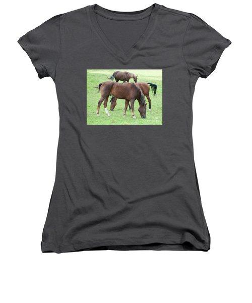 Horses Women's V-Neck