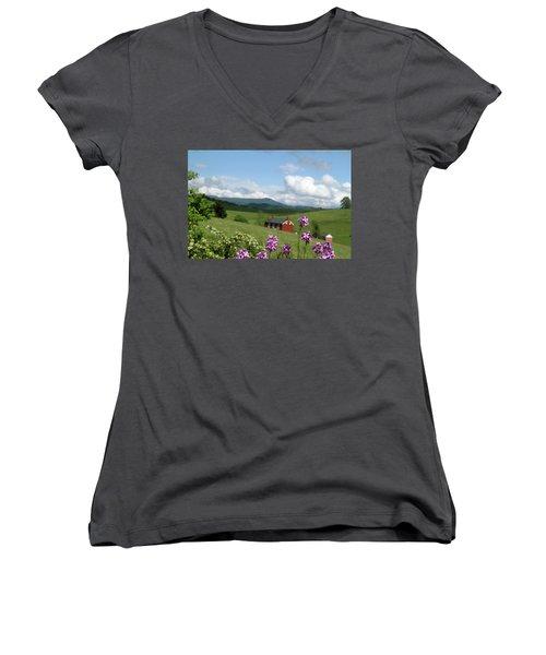 House On Hill In Lexington Women's V-Neck T-Shirt (Junior Cut) by Emanuel Tanjala