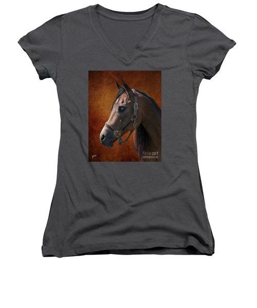 Houston Women's V-Neck T-Shirt (Junior Cut) by Jim  Hatch