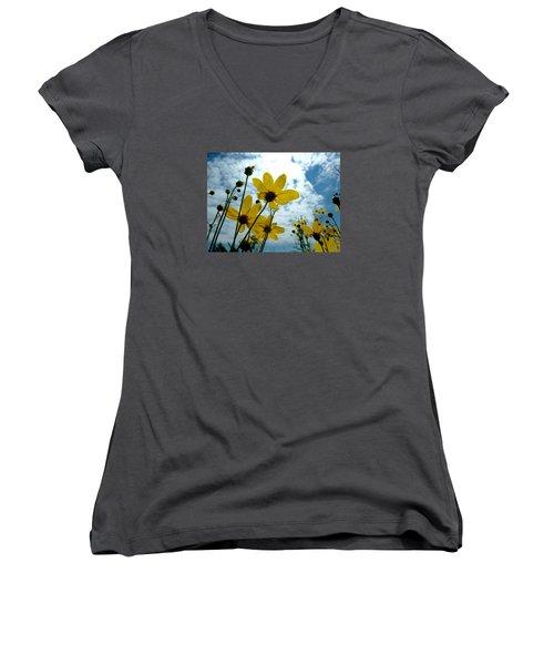 How Summer Feels Women's V-Neck T-Shirt