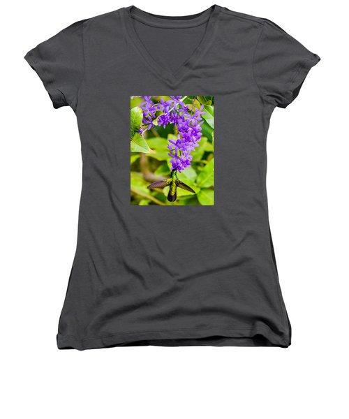Humming Bird Flowers Women's V-Neck