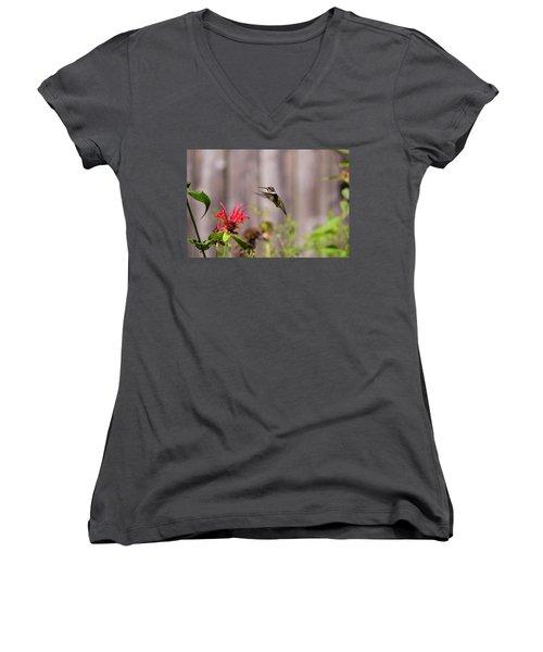 Humming Bird Hovering Women's V-Neck (Athletic Fit)