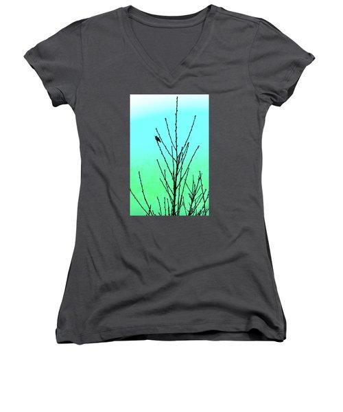 Hummingbird After Rain Women's V-Neck T-Shirt (Junior Cut) by Gem S Visionary