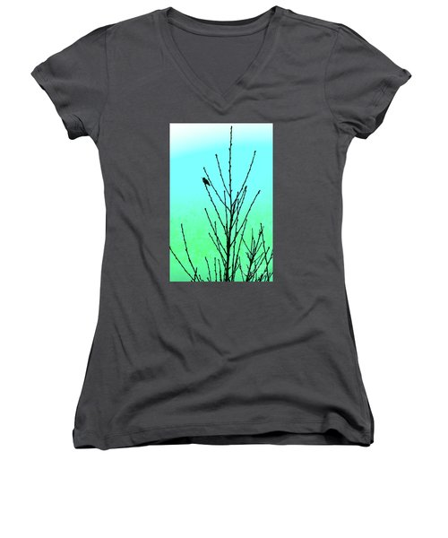 After Rain Women's V-Neck (Athletic Fit)