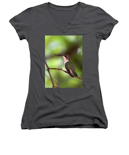 Hummingbird - Afternoon Ruby Women's V-Neck T-Shirt (Junior Cut) by Travis Truelove