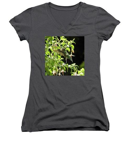Hummingbird Feeding Women's V-Neck T-Shirt (Junior Cut) by Brian Chase