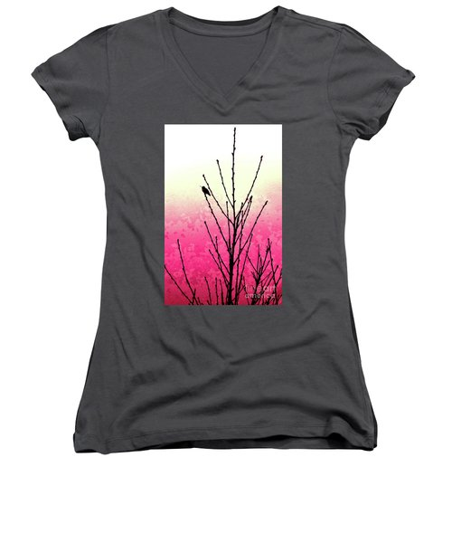 Hummingbird Valentine Women's V-Neck (Athletic Fit)