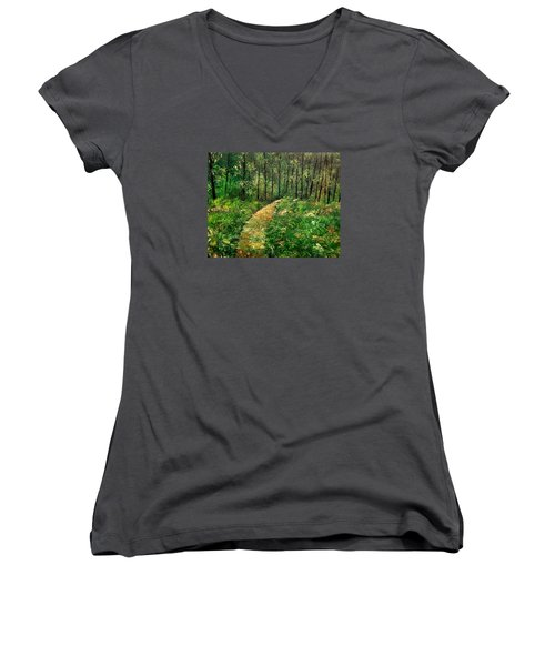 I Think It's Time For Our Walk Women's V-Neck T-Shirt
