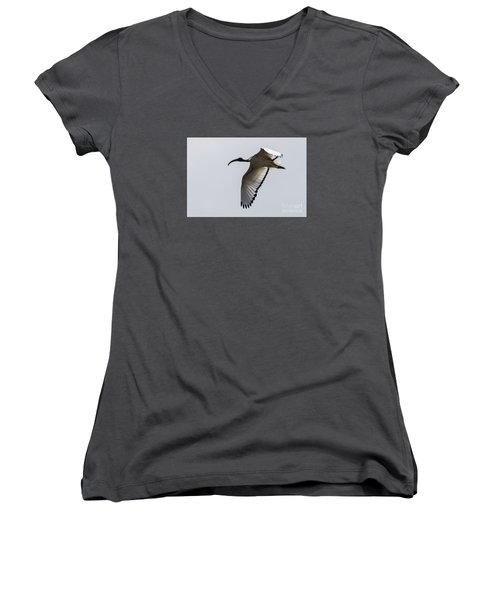 Women's V-Neck T-Shirt (Junior Cut) featuring the photograph Ibis In Flight by Pravine Chester