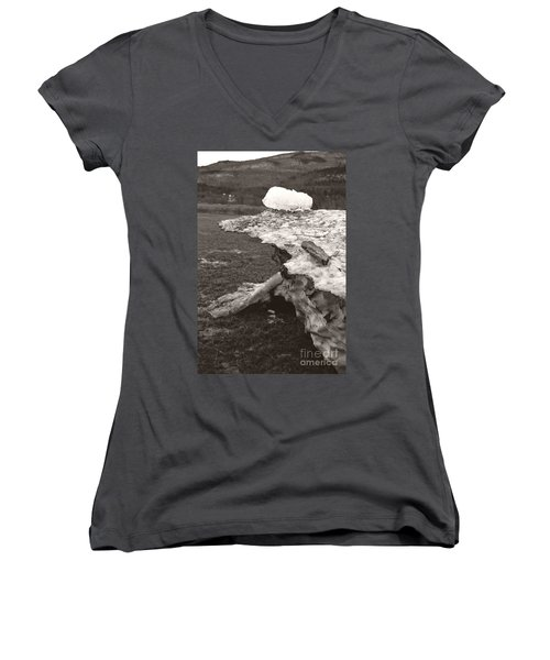Iceberg Silo Women's V-Neck T-Shirt (Junior Cut) by Heather Kirk