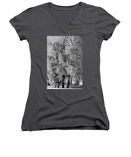 Iced Cottonwoods Women's V-Neck T-Shirt (Junior Cut) by Colleen Coccia