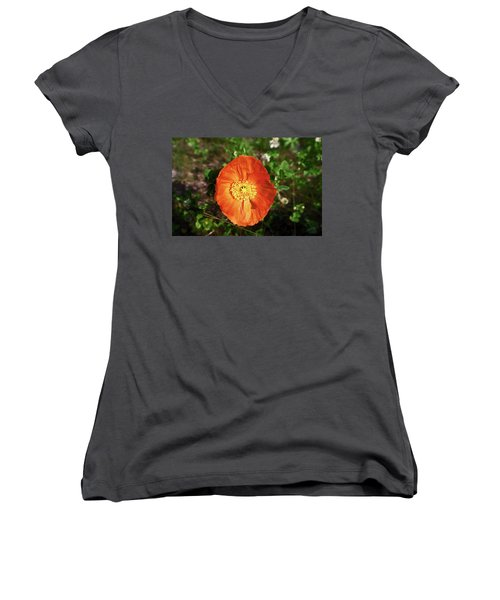 Women's V-Neck T-Shirt (Junior Cut) featuring the photograph Iceland Poppy by Sally Weigand