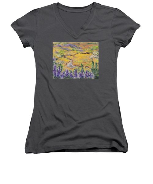 Icelandic Adventure Women's V-Neck (Athletic Fit)