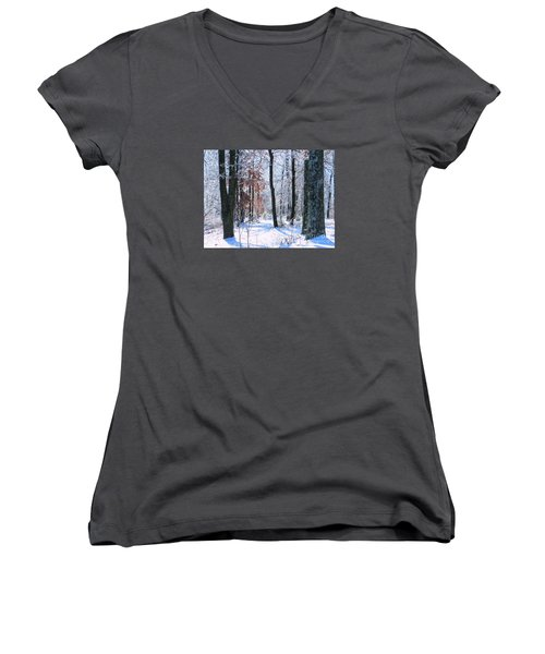 Icey Forest 1 Women's V-Neck
