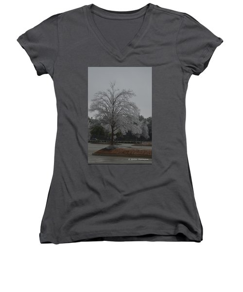Icy Tree Women's V-Neck T-Shirt