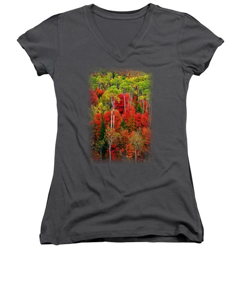 Idaho Autumn T-shirt Women's V-Neck