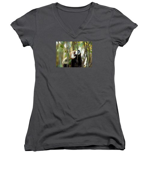 Women's V-Neck T-Shirt (Junior Cut) featuring the photograph Idgie In A Tree by Lisa L Silva