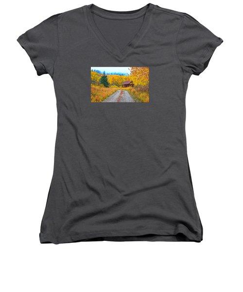 Idyllic Nostalgia Women's V-Neck T-Shirt (Junior Cut)