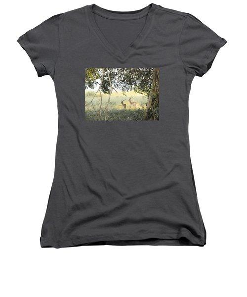 Impala Women's V-Neck T-Shirt