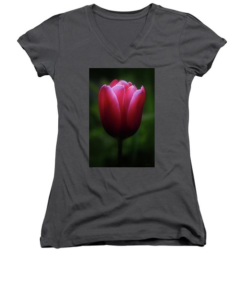 Imperfect Perfection Women's V-Neck