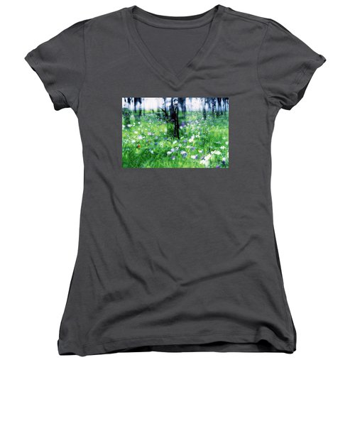 Impressionistic Photography At Meggido 1 Women's V-Neck