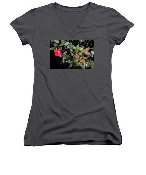 In Bloom Women's V-Neck