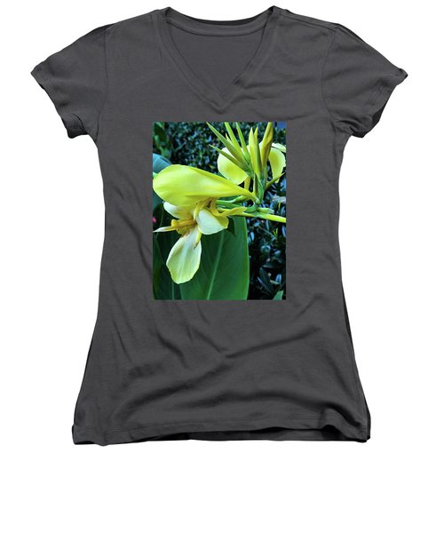 In Character Women's V-Neck