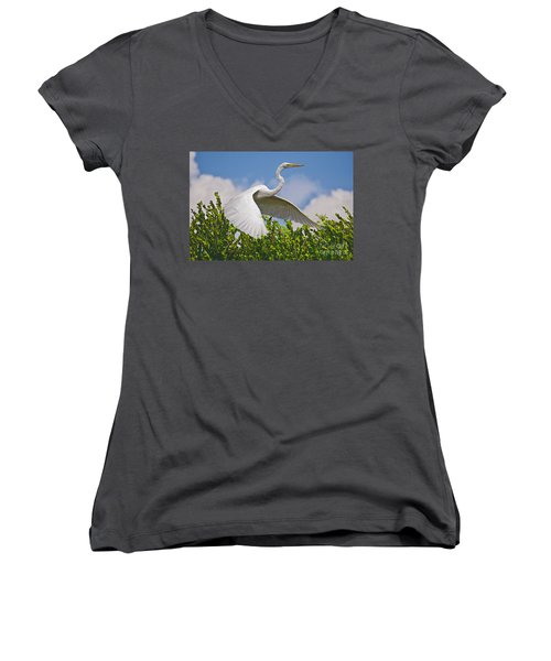 In Flight Women's V-Neck T-Shirt