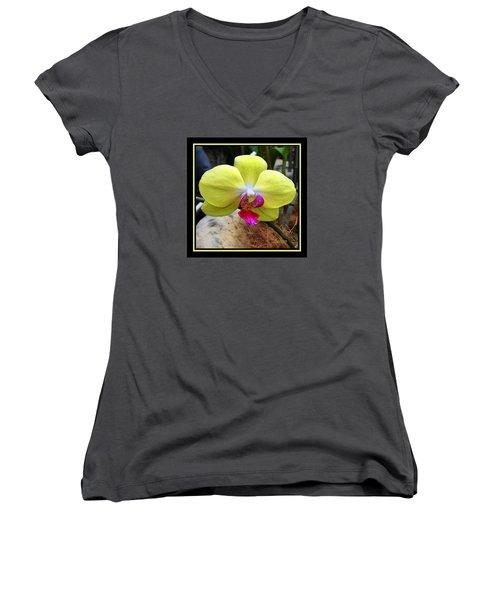 In Living Color Women's V-Neck T-Shirt (Junior Cut) by Steven Lebron Langston