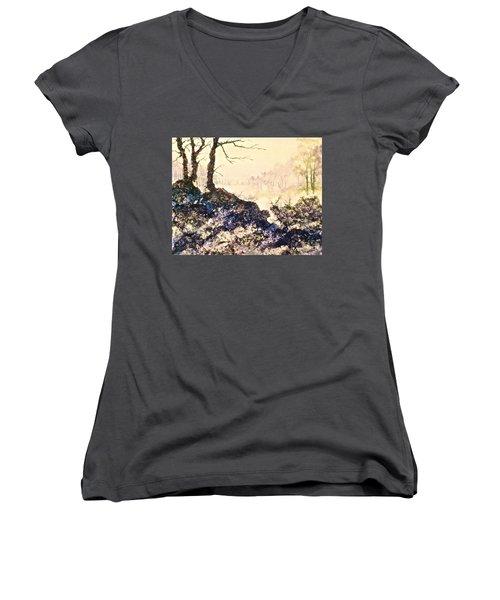 In The Distance Women's V-Neck T-Shirt (Junior Cut) by Carolyn Rosenberger