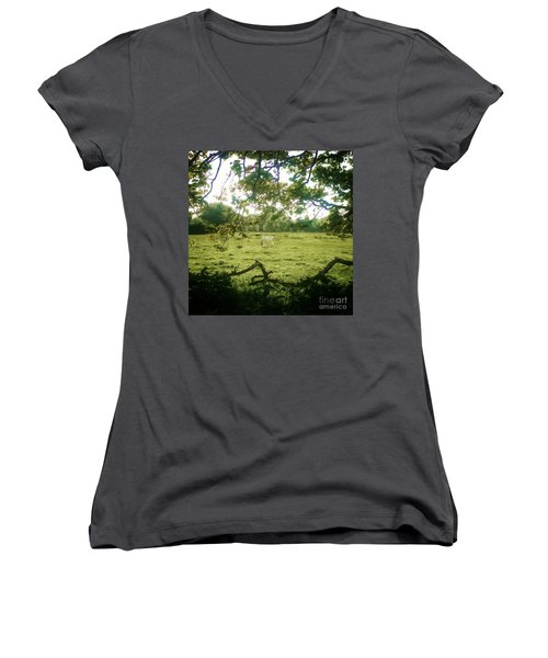 In The Field Women's V-Neck T-Shirt