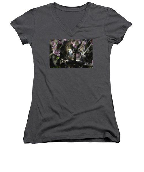 In The Light Of Morning Women's V-Neck T-Shirt (Junior Cut) by Trina Ansel